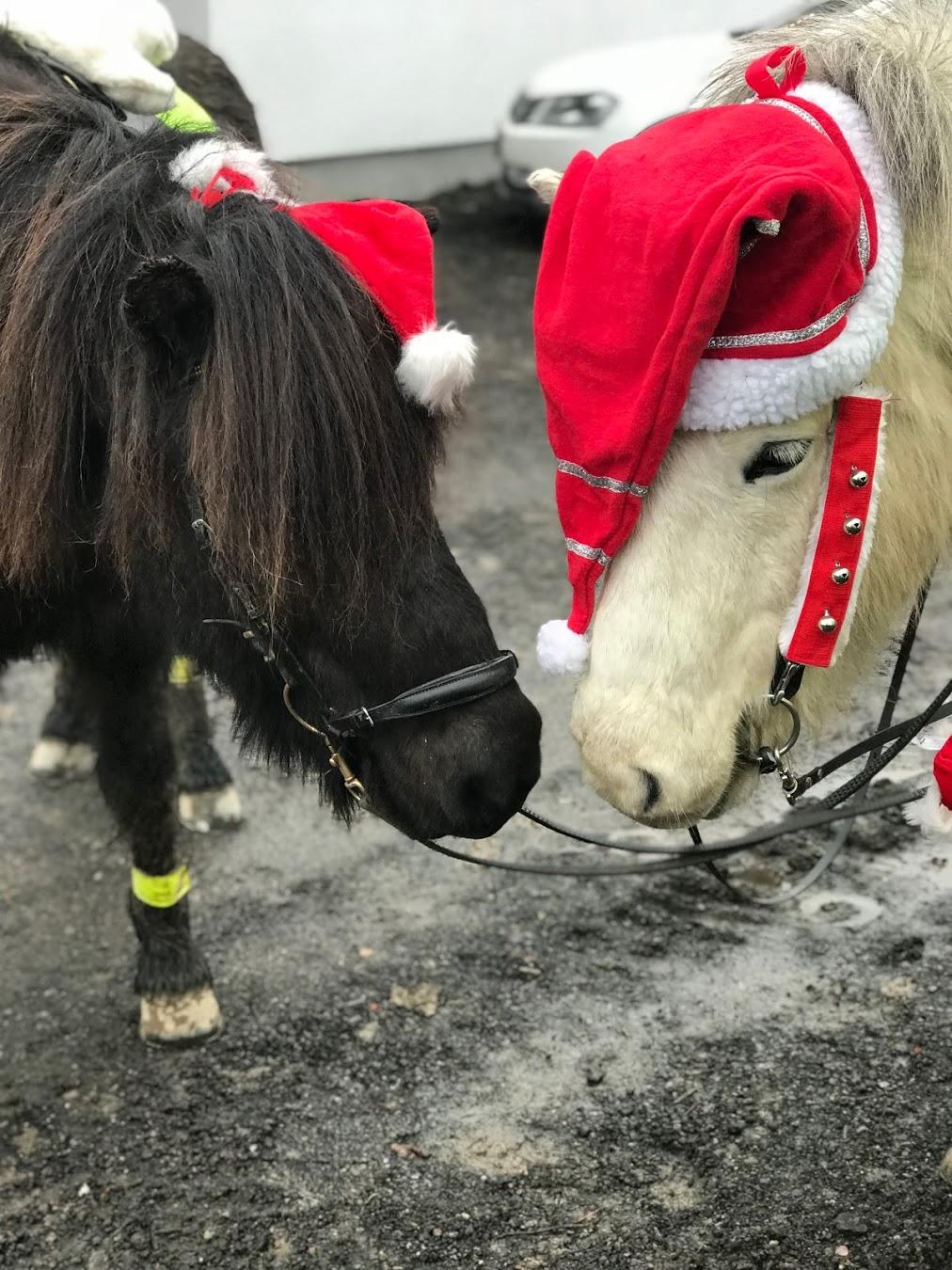 Julhästar